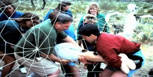 Venture Up High Ropes Course Ground elements outdoor team building